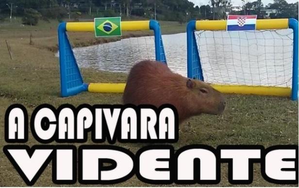 Copa do Mundo 2014 - 14